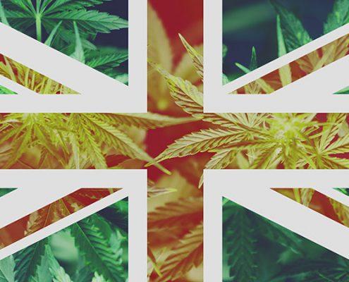 UK's quiet cannabis revolution